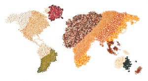 Global Food, Nutrition, Culture and Diabetes:  A Podcast Series
