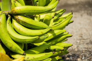 The Merry GREEN PLANTAIN: Step by Step Guide to Happy Patacones/Tostones